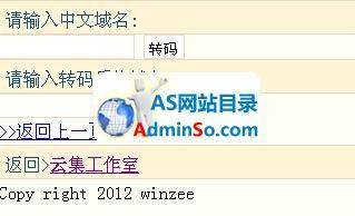 中文域名解码系统